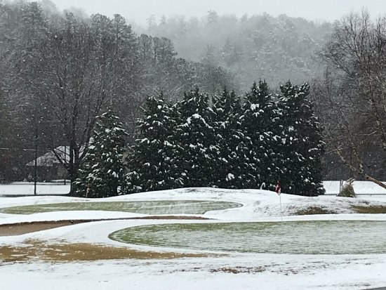 snowy-trees-on-the-golf